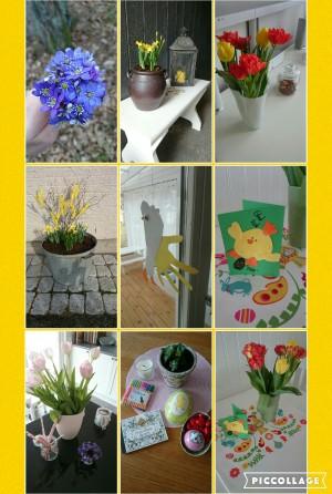 wpid-collage-2016-03-28-19_49_02.jpg.jpg
